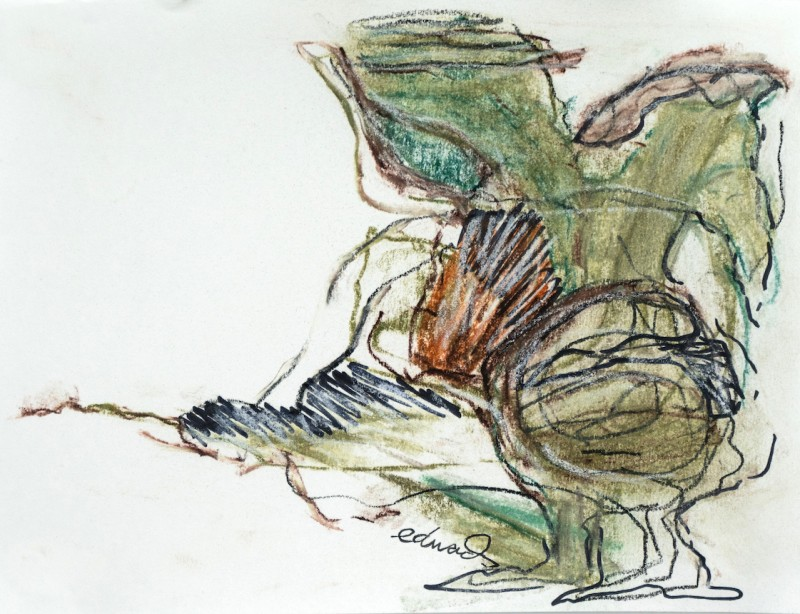 ink and pastel study by Canadian artist barbra edwards Pender Island, BC