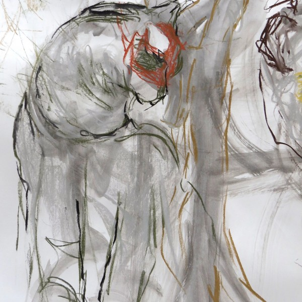 studio drawing on paper, Canadian contemporary artist barbra edwards, gulf islands