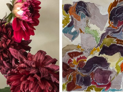 untitled (dahlias wth watercolour) diptych by contemporary Canadian artist barbra edwards pender island BC