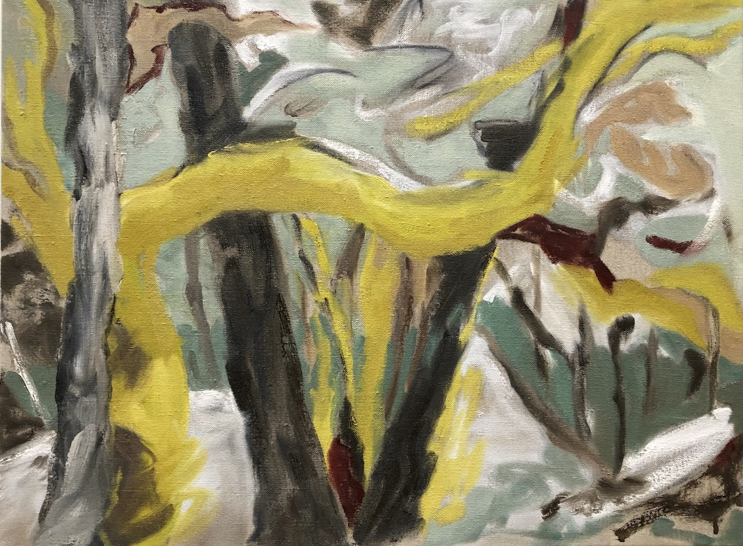 yellow tree study (covid) oil on linen by Canadian contemporary painter barbra edwards, Pender Island, BC