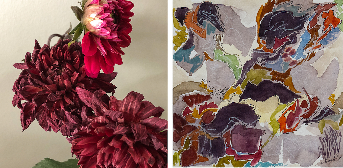red dahlias photo with watercolour painting by Canadian photographer and painter barbra edwards gulf islands, BC