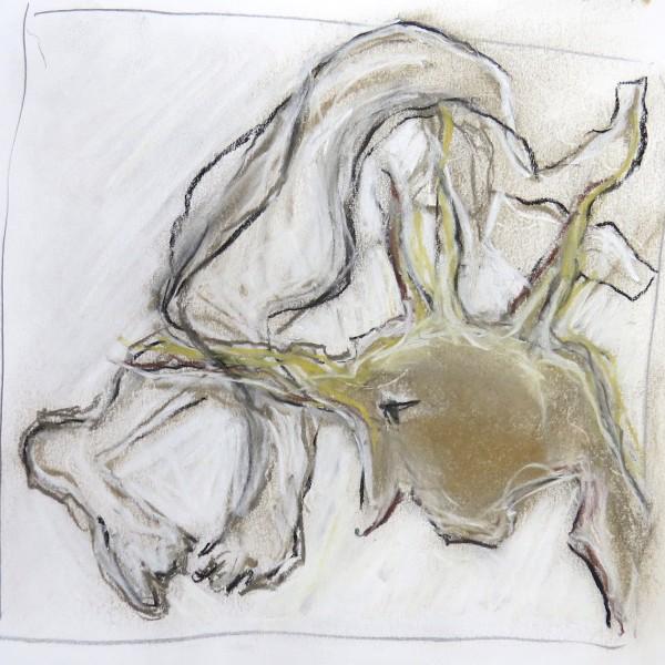 studio sketch on paper, Canadian contemporary artist barbra edwards, gulf islands