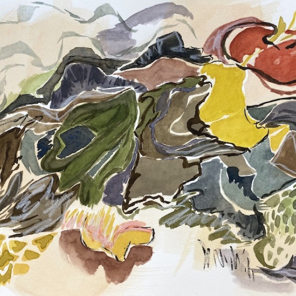 edwards_landscape_dreaming_watercolour_mixed media_by Canadian contemporary painter_barbra edwards_gulf islands_BC