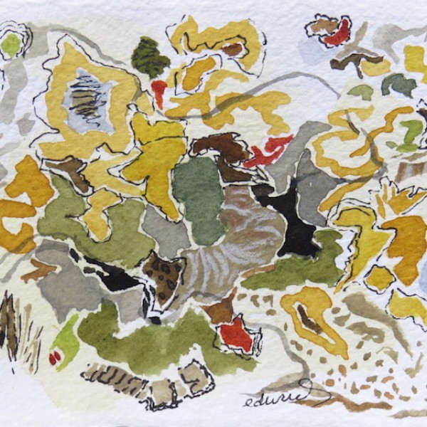 'petite jaune (roadside)' watercolour by contemporary BC artist barbra edwards, Gulf Islands