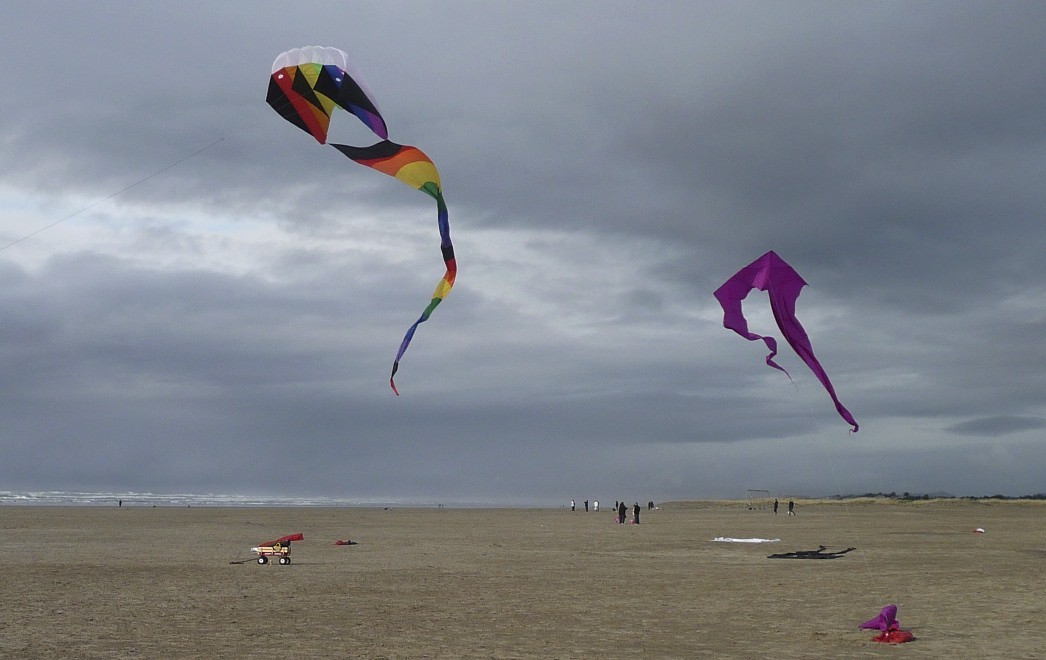 flying kits on Oregon beach, photograph by abstract artist  Barbra Edwards, Pender Island, BC